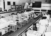 Yorba Linda Citrus Packing House circa 1949, Judy Ledford looking into camera at center